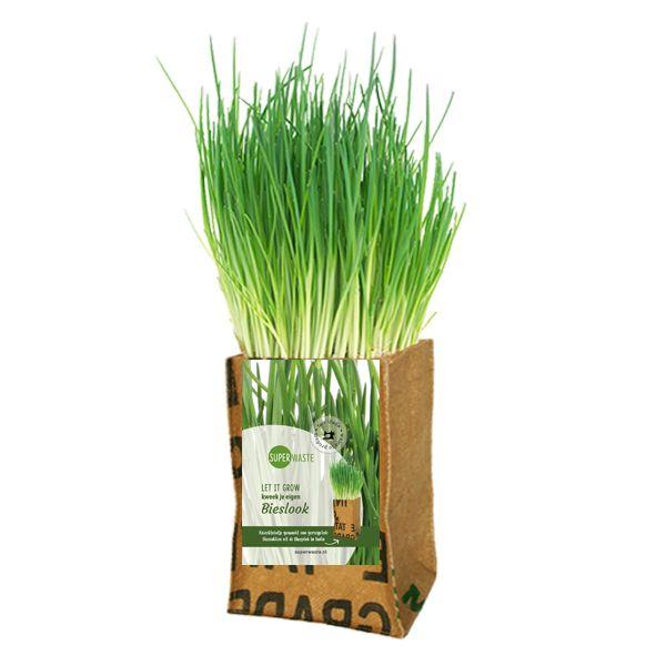 Let it grow - Schnittlauch Kräuter-Pflanze - Fairtrade Upcycling