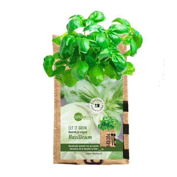 Let it grow - Kräuter-Hängegarten Basilikum - Fairtrade Upcycling
