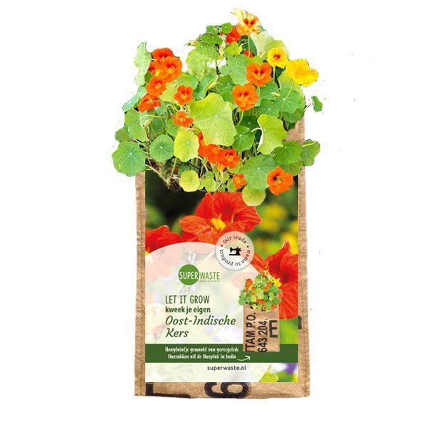 Let it grow - Hängegarten Kapuzinerkresse - Fairtrade Upcycling