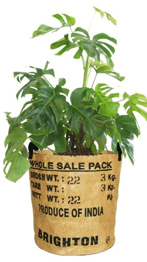 Tea-Basket - Korb S - upcycling - Fairtrade